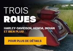 Bouton Trois-Roues | Denray